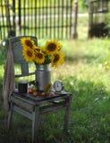 Todavía vida suburbana Foto de archivo libre de regalías