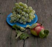Todavía vida una placa azul con las uvas y una manzana a la derecha Fotos de archivo