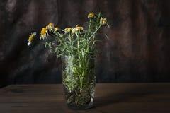 Todav?a vida con las flores marchitadas imagenes de archivo