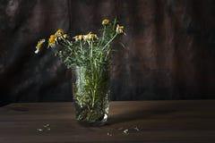 Todav?a vida con las flores marchitadas fotos de archivo