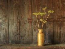 Todavía del estilo vida retra de flores secadas en florero Fotos de archivo libres de regalías