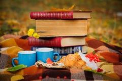Todavía del otoño vida romántica Fotografía de archivo