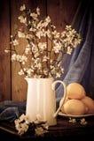 Todavía flor de Apple de la vida Fotos de archivo libres de regalías