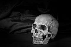 Todavía vida, blanco y negro del cráneo humano en la tabla de madera Imagen de archivo libre de regalías