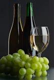 Todavía vida con la uva y los vinos Fotografía de archivo