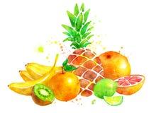 Todavía vida con las frutas Foto de archivo libre de regalías