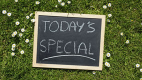 Today's special. Written on a chalkboard in a natural area on a sunny day royalty free stock photography