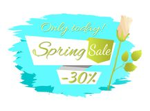 Only Today Spring Sale 30 Off Advertisement Label. Only today Spring sale -30 off advertisement label rose flower, cute springtime blooming bud on promo emblem Stock Images