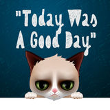 Today was a good day, card with cute grumpy cat Stock Photo