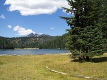 Todd湖和残破的上面 库存照片