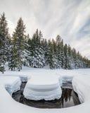 Todd Creek Winding door Sneeuw, het Nationale Bos van Deschutes, Oreg stock foto