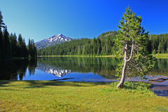 Todd Lake royalty free stock photos