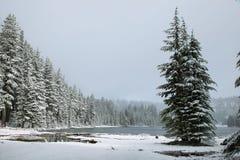 Todd See an einem schneebedeckten Tag im Juni lizenzfreie stockfotos