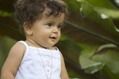 Toddler. Infant next to big green leafy plant Royalty Free Stock Photography