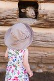 toddler στοκ εικόνες με δικαίωμα ελεύθερης χρήσης