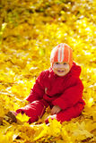 Toddler   in autumn park Stock Photo