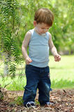 Toddler baby boy discovering treasures in forest Stock Images