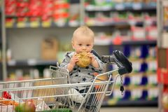 Toddler baby boy, sitting in a shopping cart in grocery store, s. Miling and eating bread  while mommy is shopping Stock Image