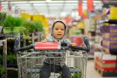 Toddler baby boy, sitting in a shopping cart in grocery store, s. Miling and eating bread  while mommy is shopping Royalty Free Stock Image