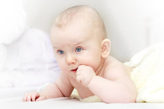 Toddler Royalty Free Stock Photos