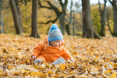 Toddler baby playing in autumn park Royalty Free Stock Photography