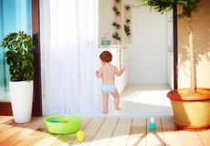 Toddler baby walking away at warm sunny day at home Royalty Free Stock Photo