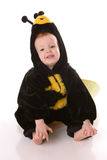 Toddler bee sitting Stock Photography