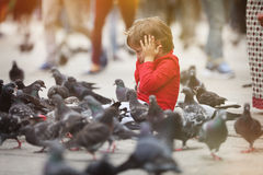 Toddler being scared by the pigeons Royalty Free Stock Photo