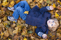 Toddler blond boy with blue eyes lays on bed of autumn fallen le Stock Photo