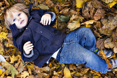 Toddler blond boy with blue eyes. Lays on bed of autumn fallen leaves Royalty Free Stock Image
