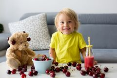 Free Toddler Blond Child, Cute Boy, Eating Cherries With Teddy Bears Stock Image - 189460601