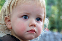 Toddler boy Stock Photography