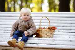 Toddler boy in autumn park Royalty Free Stock Photography