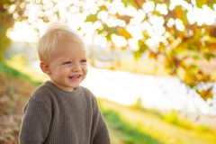 Toddler boy blue eyes enjoy autumn. Small baby toddler on sunny autumn day. Warmth and coziness. Happy childhood. Sweet. Childhood memories. Child autumn leaves stock photography