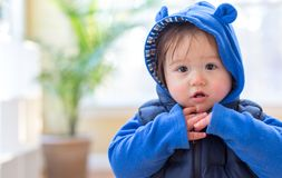 Toddler boy bundled up in winter clothes. Ready to go outside royalty free stock photo