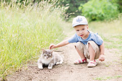 Toddler boy with a cat Stock Images