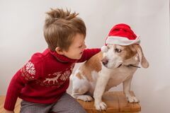 Toddler boy in Christmas jacket holding beagle in Santa hat