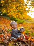 Toddler boy enjoy autumn with dog friend. Small baby toddler on sunny autumn day walk with dog. Warmth and coziness. Happy childhood. Sweet childhood memories stock images