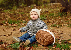 Toddler boy in fall Stock Photography