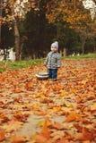 Toddler boy in fall Royalty Free Stock Photos