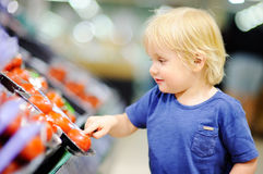 Toddler boy in a food store or a supermarket choosing fresh tomatoes Stock Photography