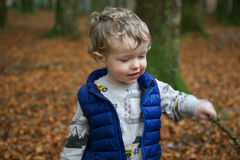 Toddler boy in forest. A toddler boy holding a wooden stick outdoor in a forest in autumn stock photo