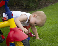 Toddler Boy in garden with trike Stock Images