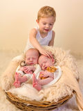 Toddler boy with identical twin babies Royalty Free Stock Photography