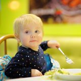 Toddler boy at the indoors cafe Royalty Free Stock Photo