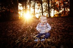 Toddler boy in the leaves at Thanksgiving Royalty Free Stock Photography
