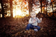 Toddler boy in the leaves at Thanksgiving Stock Images