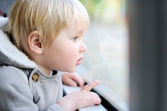 Toddler boy looking out train or tram window Stock Image