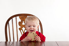 Toddler Boy Looks At Cookie with Open Mouth Stock Photo