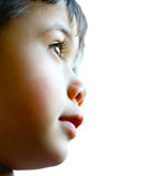 Toddler boy looks out far Stock Photo